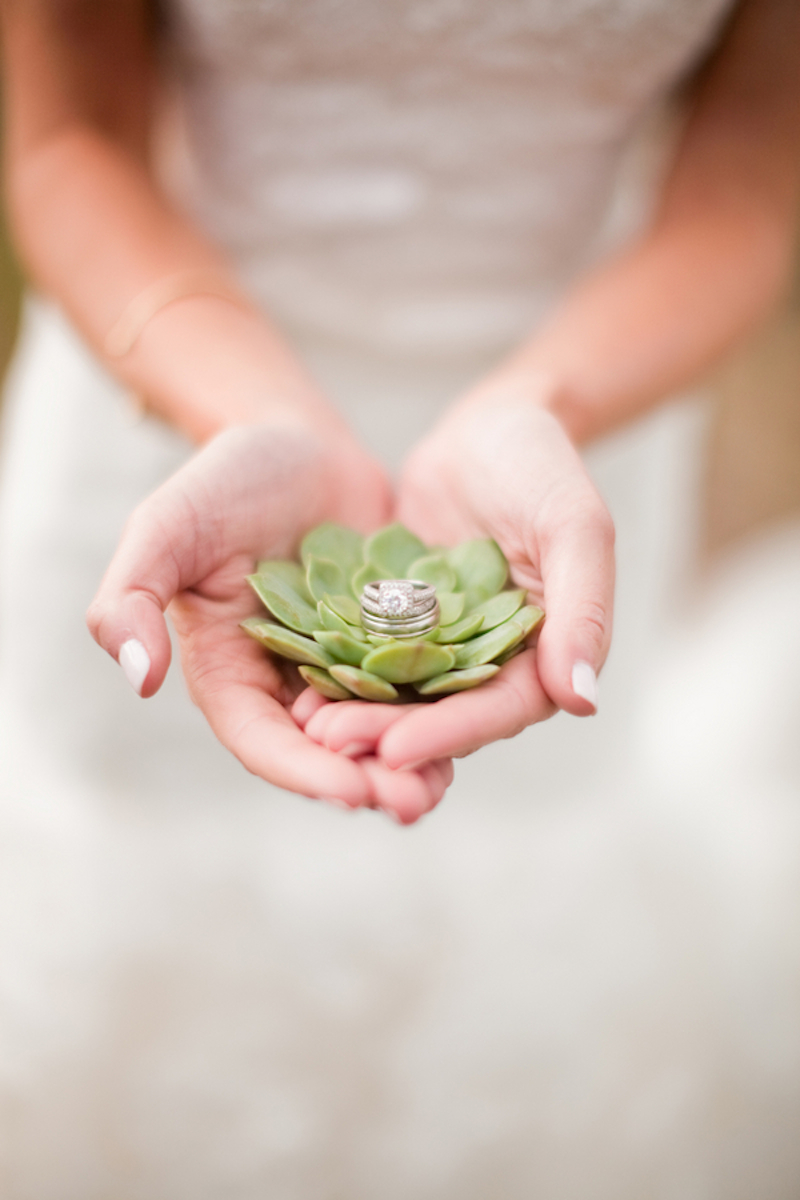 Succulent wedding inspiration