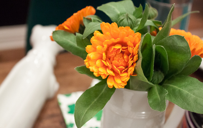 Orange-and-green-flowers