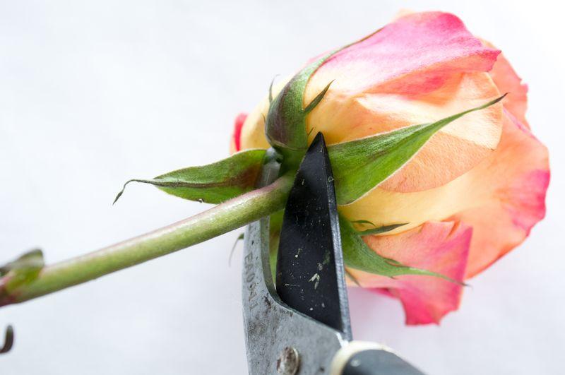 Floral Letter DIY-3
