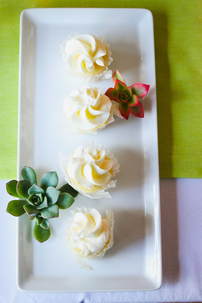 Cupcakes-and-succulents