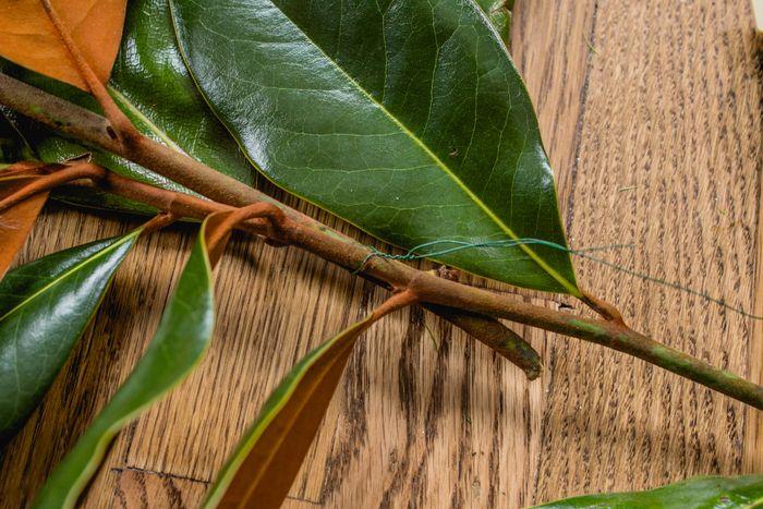 Magnolia garland-7