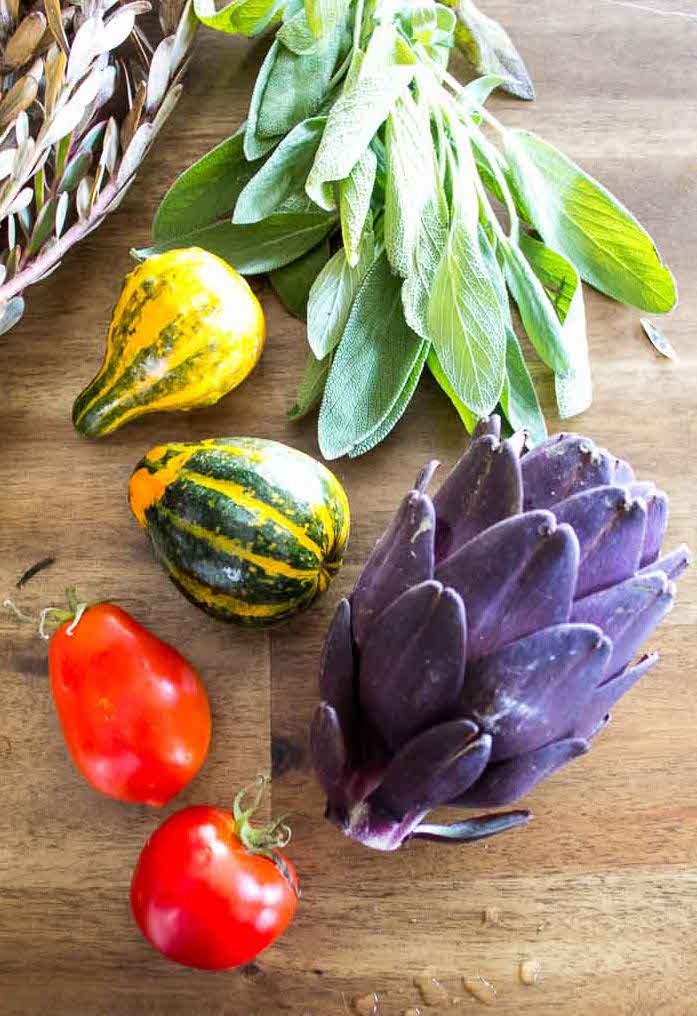 Squash-artichoke-tomatoe