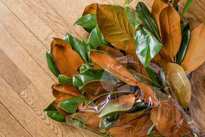 Magnolia garland-4