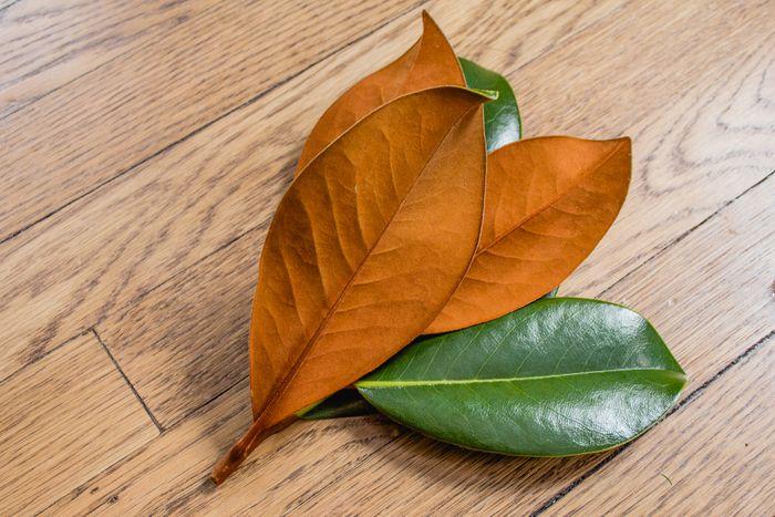 Magnolia garland-16