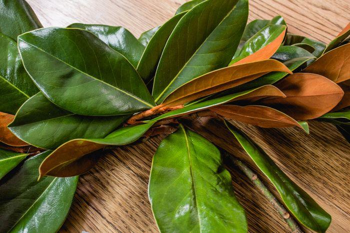 Magnolia garland-17